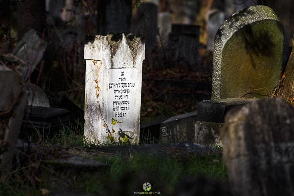 Zentralfriedhof6