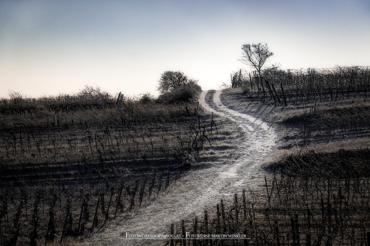 Weniger ist mehr - Winterspaziergang Weg