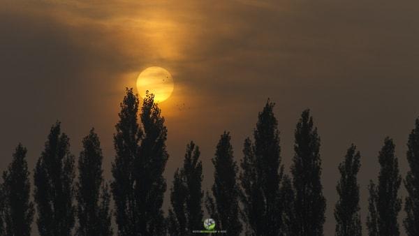 Sunrise Windradlteich - Fotokurs Bildgestaltung