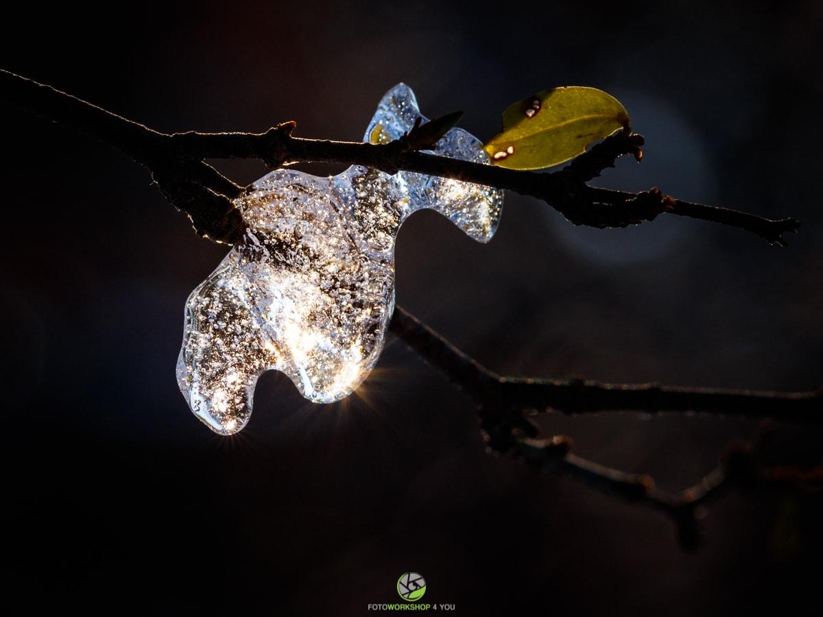Eisdiamant