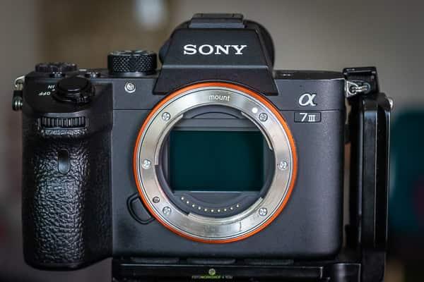 Tipps zum Kamerakauf - Vollformatsensor